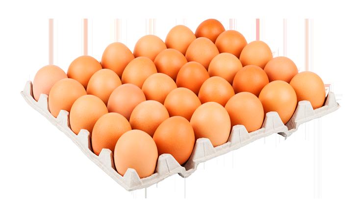 ovos-galinha-caipira