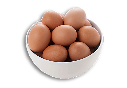 ovos-golden-aves